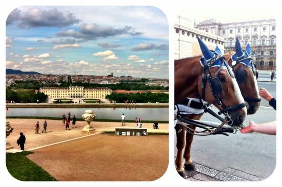 Wien © Foto Ilka G./mein-diabetes-blog.com